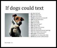 If Dogs could text Chien Jack Russel, Jack Russell Puppies, Jack Russell Terrier, I Love Dogs, Puppy Love, Cute Dogs, Funny Dogs, Funny Animals, Cute Animals