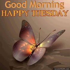 10 Tuesday Morning Quotes To Brighten Your Day Happy Tuesday Pics, Tuesday Greetings, Good Morning Tuesday, Happy Week End, Good Morning Greetings, Good Morning Good Night, Good Night Quotes, Good Morning Wishes, Tuesday Images