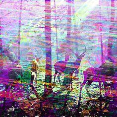 "fuckyeahpsychedelics:    ""Epheme"" by Jose Andres Rosero"