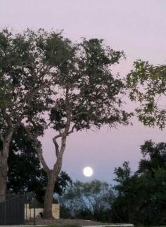 Moon 10-26-15