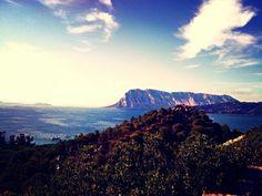 Isola tavolara #ilovesardinia
