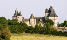 Castle of Cherveux