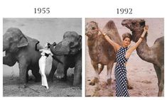 Dovima with Elephants by Richard Avedon, 1955 and Eric Boman, UK Vogue, March 1992.