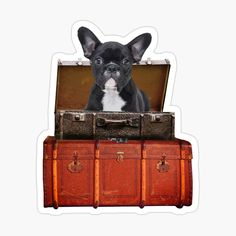 Suitcase Stickers, Old Suitcases, French Bulldog, Baggage, Designs, Creative, Dogs, Travel, Art