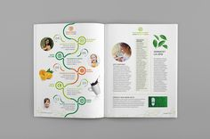 Citrosuco by Camila Janaina Magazine Spreads, Boiler, Editorial Design, Timeline, Infographic, University, Diagram, Layout, Chart