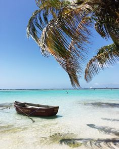 Work it, Boca Chica! Look at that perfect crystal clear water of the Caribbean. It's incredibly beautiful here! Punta Cana, Samana, Travel Careers, Zona Colonial, Travel Goals, Travel Tips, Travel Destinations, Crystal Clear Water, Like A Local
