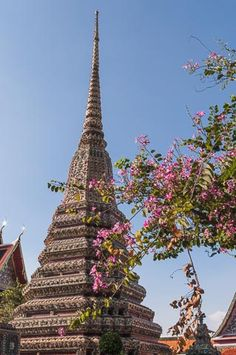 Images from Wat Pho - http://www.welshviews.com/wat-pho.html