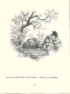 """""""And if you must talk in the field, make it a whisper"""" -Thelwell's Original Vintage Pony Horse Mount Cartoon Print 1964 Comical"""