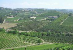 Uitzicht vanaf het kasteel van Grinzane Cavour  www.huizenjacht-italie.com