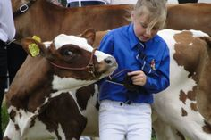 Junior showmen display their handling skills.