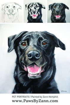 Dog portraits by artist Zann Hemphill. Oil on Canvas artwork painted using traditional oil techniques from photos of dogs. Dog Canvas Painting, Canvas Painting Tutorials, Animal Paintings, Animal Drawings, Dog Artwork, Canvas Artwork, Dog Portraits, Labrador Dogs, Black Labrador