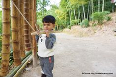 Geoje Bamboo Theme Park: A Treat For Nature lovers