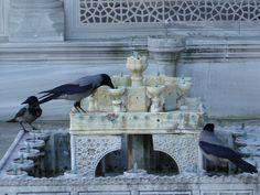 Istanbul - Topkapı Sarayı | Flickr - Photo Sharing!