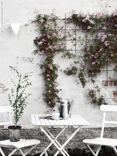 Pastel pink works well with white for spring gardens that have a rustic feel to them.