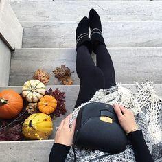 Emma Lee @emlee7 Friday's harvest#...Instagram photo | Websta (Webstagram)