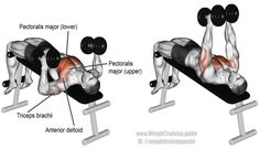 Decline hammer grip dumbbell bench press. A compound exercise. Target muscle: Sternal (Lower) Pectoralis Major. Synergistic muscles: Clavicular (Upper) Pectoralis Major, Anterior Deltoid, and Triceps Brachii.