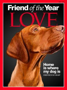 Hungarian Magyar Vizsla portrait on Time magazine by SparaFuori, $35.00