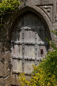 An old gothic garden door at Lanhydrock House, Cornwall