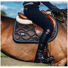 This saddle pad though #equestrian #equestrianstockholm #horse #horses #equestrianperformance
