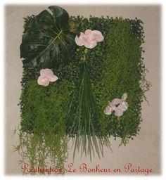 1000 ideas about toile de salle de bain sur pinterest art de salle de bain - Plante salle de bain sans lumiere ...