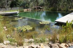 Our Projects   Natural Swimming Pools Australia