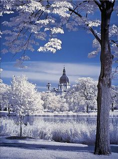 The Basillica from Loring Park - Minneapolis, Minneapolis. Even in winter, it's breathtaking. For winter sessions, be sure to wear bold colors!