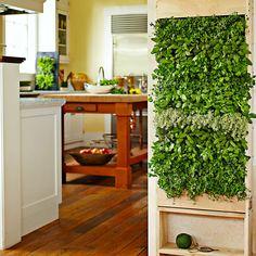 Exceptional Indoor Vertikaler Garten: Bringen Sie Die Natur Zu Hause