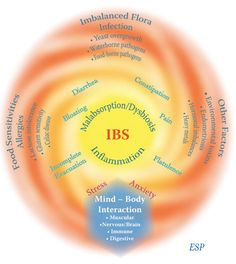 Oct 25, 2012 Peripheral Mechanisms in Irritable Bowel Syndrome #meded #ukmeded [img src = http://www.womentowomen.com/images/articles/ibs-low-res.jpg]