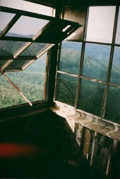 Watchtower adventure. Above the trees.