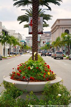 Rodeo Drive - Beverly Hills, CA.....The shopping is REDICULOUS.....LOVE IT!