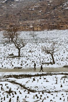 'Kabul cemetery', 1992. | 24 Striking Pictures Of Afghanistan By Photojournalist Steve McCurry