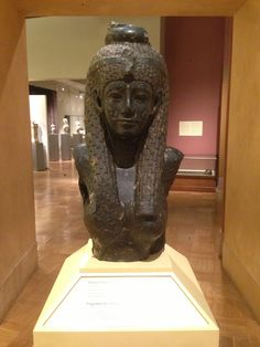 https://en.m.wikipedia.org/wiki/Royal_Ontario_Museum. The Bust of Cleopatra VII is a granite bust currently on display in the Gallery of Ancient Egypt at the Royal Ontario Museum (ROM). It is believed to have been discovered in Alexandria, Egypt at the site of Cleopatra's Sunken Palace on the island of Antirhodos.