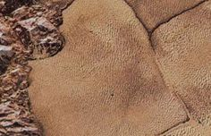 NASA just released over 100 images of Pluto — and it's breathtaking - Business Insider Inc