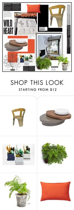 """""""Bring The Outdoors In'"""" by dianefantasy on Polyvore featuring interior, interiors, interior design, home, home decor, interior decorating, Jayson Home, Dot & Bo and Home Decorators Collection"""