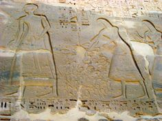 This image was created about 400 years after the Avaris hands were deposited. It shows the chopped-off hands of enemy soldiers being prepared for Ramses III, a pharaoh of Egypt, after a successful campaign.