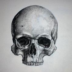 Image result for drawings of skulls