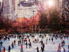 Afternoon Skate at the Wollman Rink in Central Park.