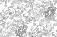 Roseus (P620/01) - Designers Guild Wallpapers - A floral wallpaper with large paint effect flowers, shown here in various shades of grey and silver on a linen background. Please request a sample for a true colour match. Paste the wall product. Pattern repeat 68.5 cm