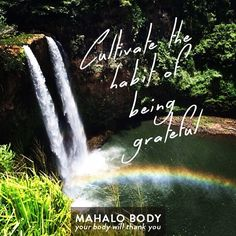 Cultivate the habit of being grateful <3   There are many things to give mahalo (thanks) for - our beautiful Earth, love, frienship, a generous smile...   Our today's #MomentofGivingThanks is to ever amazing mother Kauai.   What are you thankful for?   #mahalobody #givingthanks #placeofworship #kauai #waterfall #inpsirationalquote #inspiration #grateful #hawaii #oahu #rainbow #beautifulplaces #beautifulearth #earth#gratitude #GratitudeSpark