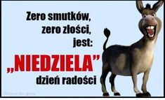 True Quotes About Life, Life Quotes, Polish Language, Weekend Humor, Man Humor, Motto, Good Morning, Jokes, Lol