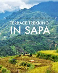 Terrace Trekking in Sapa, Vietnam
