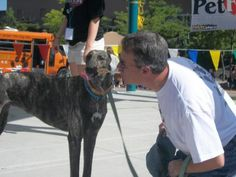We're so excited that spring is here because it means we're that much closer to Pet Fest and the Doggie Olympics! If you're interested in becoming an exhibitor at this year's event, you'll find applications here: http://petfest.net/vendors/for-business/.