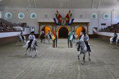 Fundacion Real Escuela Andaluza del Arte Ecuestre, Carrusel 003.jpg