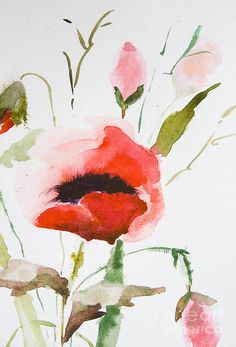 water color paintings, flowers | Watercolor Poppy flower Painting - Watercolor Poppy flower Fine Art ...