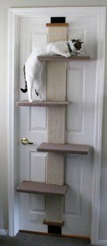 cat wall shelves for cat room - SmartCat Multi-Level Cat Climber -- You can find more details by visiting the image link. (This is an affiliate link) Cat Climber, Tower Climber, Cat Towers, Cat Scratching Post, Cat Scratcher, Cat Room, Cat Condo, Cat Supplies, Cat Tree
