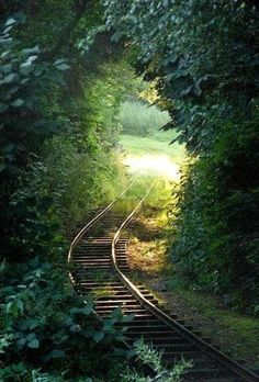 train tracks through a tunnel of leaves~~ Some paths are so beautiful to behold Abandoned Train, Abandoned Places, Magic Places, Tree Tunnel, Under The Tuscan Sun, Old Trains, All Nature, Train Tracks, Locomotive