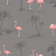 Colours Charcoal & pink Flamingo Mica effect Smooth Wallpaper - B&Q for all your home and garden supplies and advice on all the latest DIY trends Wallpaper Floor, Cheap Wallpaper, Bathroom Wallpaper, Print Wallpaper, Home Wallpaper, Textured Wallpaper, Pattern Wallpaper, Wallpaper Ideas, Cottage Wallpaper
