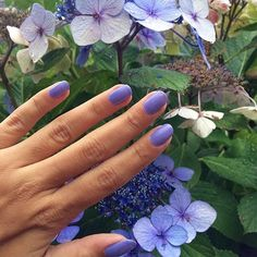 OPI's You're Such a Budapest is captures the essence of our Violet Verbena : Purple Hues, Periwinkle, Spring Ahead, Color Of The Year, My Favorite Color, Opi Products, Lavender, Verbena, Budapest