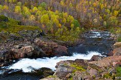 En foss bruser nedover igjennom skogen     http://www.tursiden.no/foss-igjennom-hostskogen/