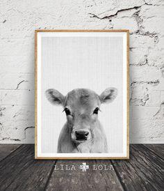 Kalf Print, Baby-koe landbouwhuisdieren Wall Art, het Decor van de kwekerij, grote printbare Poster digitale Download, Decor van de boerderij, foto baby's kamer